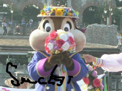P1690347.jpg